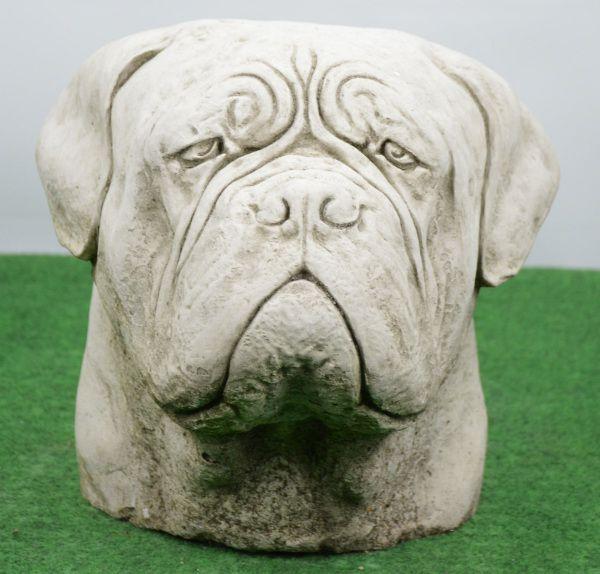 Hundekopf Bordeaux Dogge