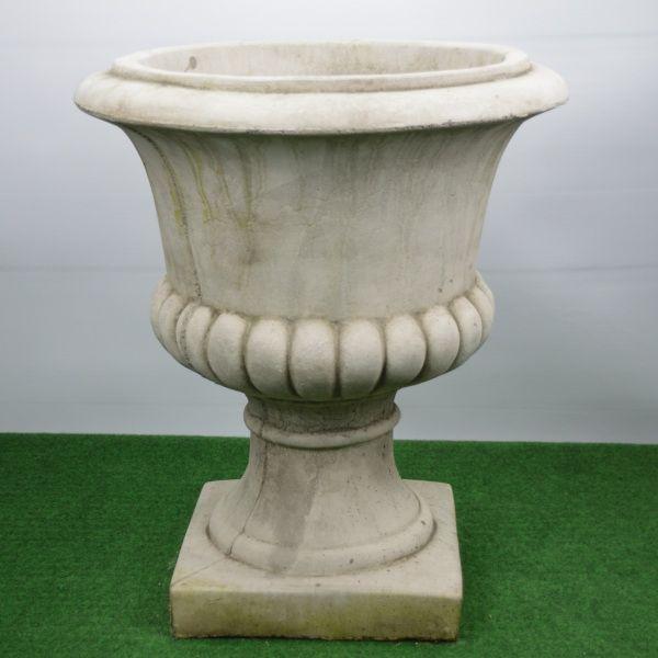 Pokal Dorset