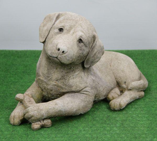 Labrador mit Knochen