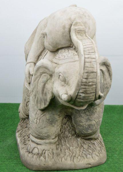 Shaolin auf Elefant
